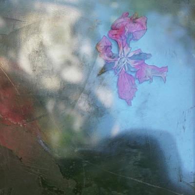 Photograph - Return To Sender.#2 by Viggo Mortensen
