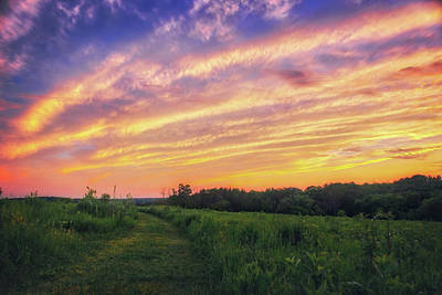 Photograph - Retzer Nature Center - Summer Sunset #4  by Jennifer Rondinelli Reilly - Fine Art Photography