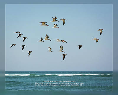 Photograph - Revelation 21 4 by Dawn Currie