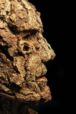 Fantasy Tree Mixed Media - Revered A Natural Portrait Bust Sculpture By Adam Long by Adam Long
