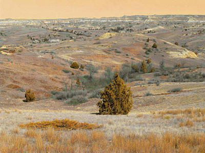 Photograph - Reverie Of Coal Vein Hills by Cris Fulton