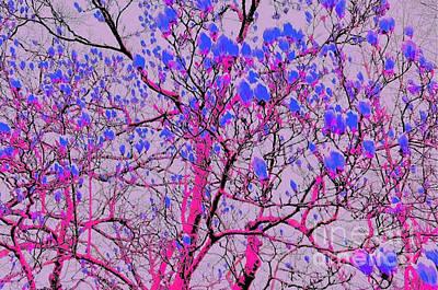 Digital Art - Reverse Magnolia by Arthur Really