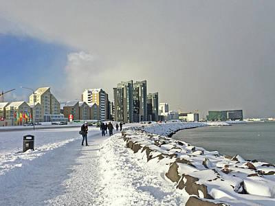 Photograph - Reykjavik  Walk Way Along The Bay Iceland 2 3122018 _j2340.jpg by David Frederick