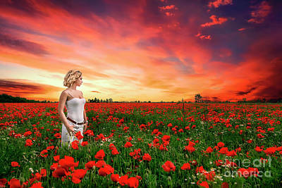 Photograph - Rhapsody In Red by Evelina Kremsdorf