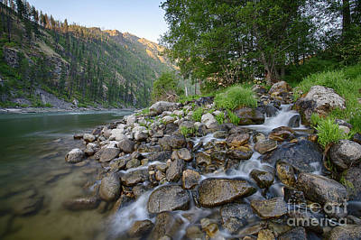 Photograph - Rhett Creek by Idaho Scenic Images Linda Lantzy