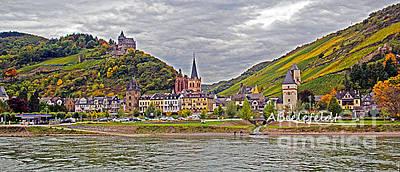 Photograph - Rhine In Fall by April Bielefeldt