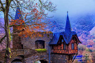 Photograph - Rhine Kastle by Rick Bragan