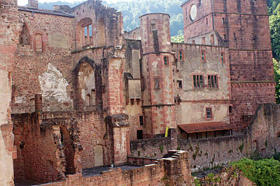 Photograph - Rhine River 33 Heidelberg by Steve Breslow