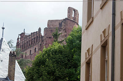 Photograph - Rhine River 36 Heidelberg by Steve Breslow