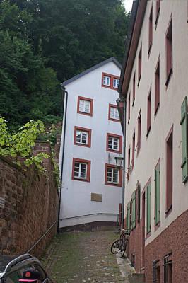 Photograph - Rhine River 37 Heidelberg by Steve Breslow