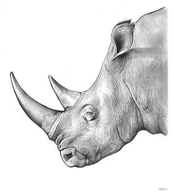 Rhinoceros Drawing - Rhino by Greg Joens