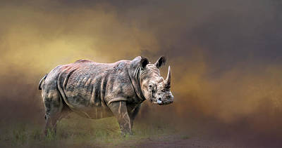 Photograph - Rhino by Maria Coulson
