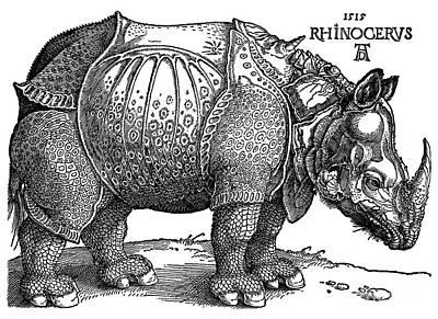 Photograph - Rhinoceros 1515 by Padre Art