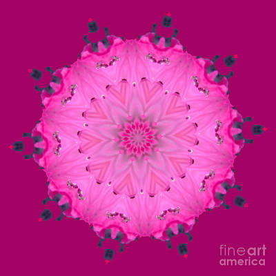 Digital Art - Rhoda Mandala 1 by Julia Underwood