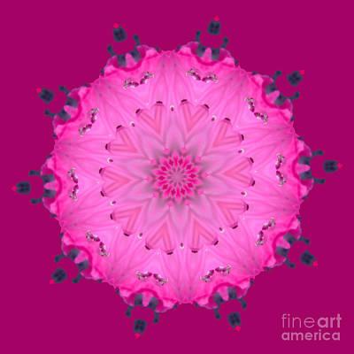 Digital Art - Rhoda Mandala 1 by Julia Underwood