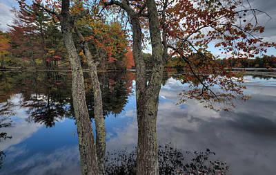 Digital Art - Rhode Island Pond by Patrick Groleau