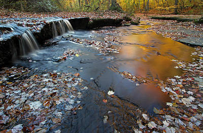 Photograph - Rhode Island Stepstone Falls by Juergen Roth