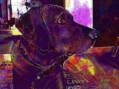 Rhodesian Digital Art - Rhodesian Ridgeback Dog Pet Head  by PixBreak Art