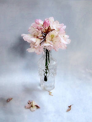 Rhododendron Bloom In A Glass Bottle Art Print