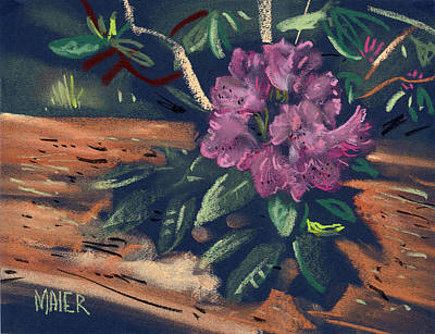 Rhododendron Art Print by Donald Maier