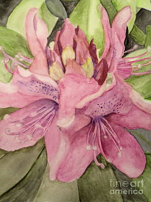 Painting - Rhododendron  In The Garden by Carol Grimes