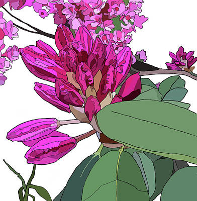 Painting - Rhododendron by Jamie Downs