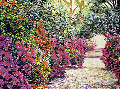 Rhododendron Pathway Exeter Gardnes Art Print by David Lloyd Glover