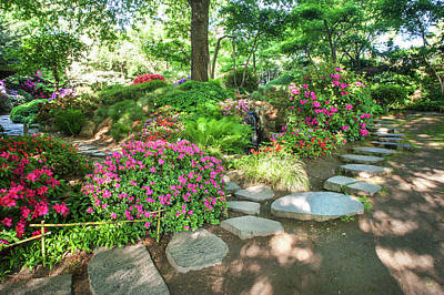 Photograph - Rhododendrons Blooms In Japanese Garden. Prague by Jenny Rainbow
