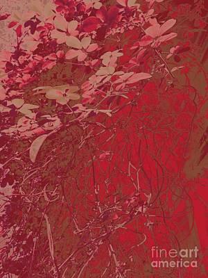 Photograph - Rhythms In Red by Nancy Kane Chapman