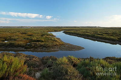 Ria Formosa Water Stream Art Print by Angelo DeVal