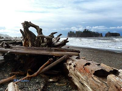 Photograph - Rialto Beach Driftwood 3 by Sadie Reneau