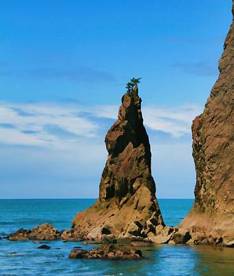 Photograph - Rialto Beach Sea Stack by Dan Sproul