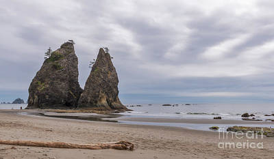 Photograph - Rialto Beach by Sharon Seaward
