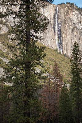 Photograph - Ribbon Fall Yosemite California by Adam Rainoff