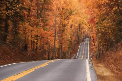Ribbon Of Highway Art Print by Lori Deiter