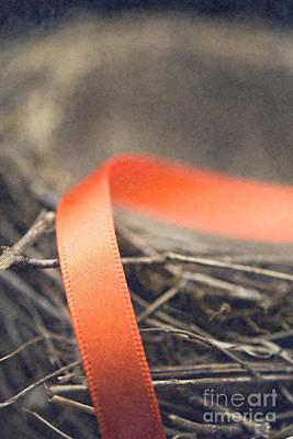 Photograph - Ribbon On Bird's Nest by Clayton Bastiani