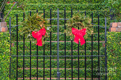 Photograph - Ribbons And Bows by Dale Powell