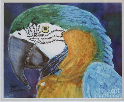 Ricco Print by Ann Sokolovich
