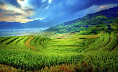 Digital Art - Rice Fields In Spring Expressionism by Georgiana Romanovna
