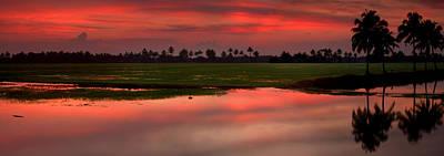 Kerala Photograph - Rice Paddies At Sunset by Andrew Soundarajan