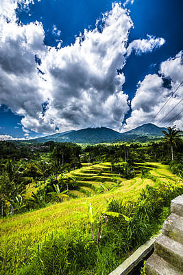 Ethereal - Rice Terrace 3 by Jijo George