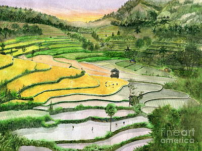 Rice Field Painting - Ricefield Terrace II by Melly Terpening