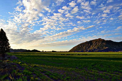 Photograph - Rich California Land by Glenn McCarthy Art and Photography