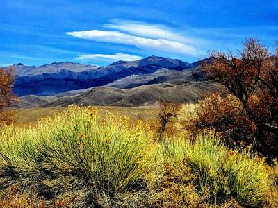 Photograph - Rich Desert Colors by Marilyn Diaz
