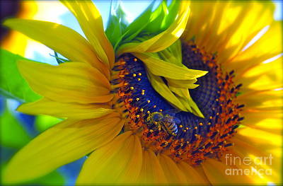 Rich In Pollen Art Print by Gwyn Newcombe