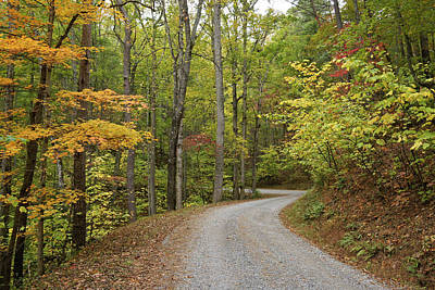 Photograph - Rich Mountain Road by Michele Burgess