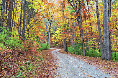 Photograph - Rich Mountain Road by Victor Culpepper