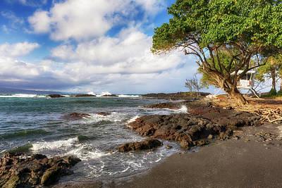 Photograph - Richardson's Ocean Park by Susan Rissi Tregoning
