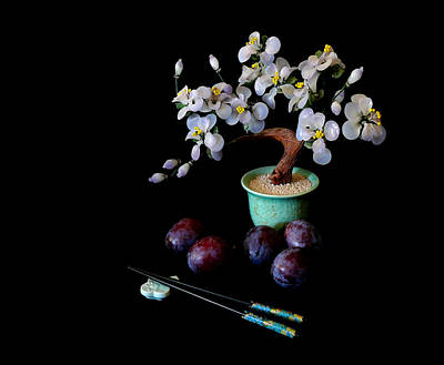 Photograph - Riches Honor And Plums by Susan Duda