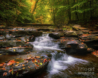 Photograph - Ricketts Glen 1 by Jerry Fornarotto